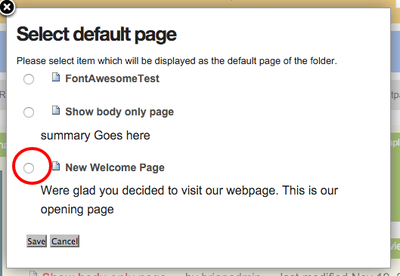 Select the page you want as the default view.